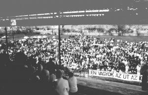 1993 - Homan év